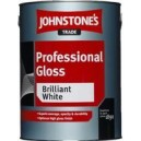 Краска Professional Gloss Brilliant  White